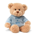 It's a Boy Teddy Bear with Embroidered Blue Shirt by Gund