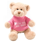 I'm the Big Sister Teddy Bear with Embroidered Pink Shirt by Gund