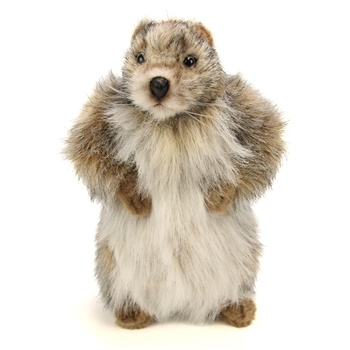 Handcrafted 9 Inch Lifelike Baby Groundhog Stuffed Animal by Hansa