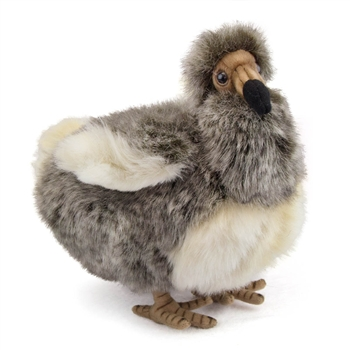 Handcrafted 10 Inch Lifelike Dodo Bird Stuffed Animal by Hansa