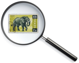 Stuffed Elephant Category stamp