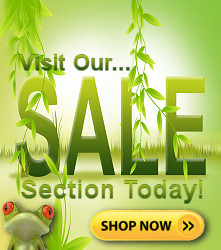 Visit our sales and specials section